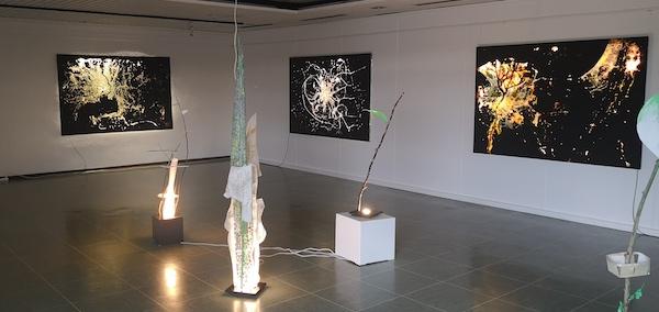 Nessler Foto Kommunale Galerie
