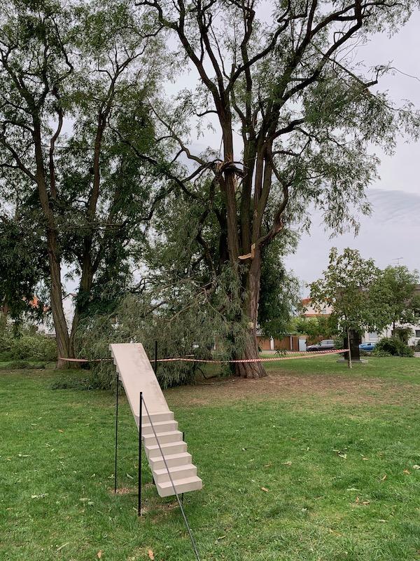 Park nach dem Sturm